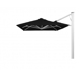 P7 parasol mural Black Widow (250*250)