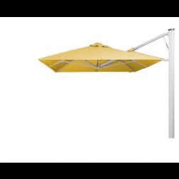 P7 parasol mural Butter Cup (300*300)